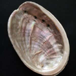 Ormeaux & Abalones